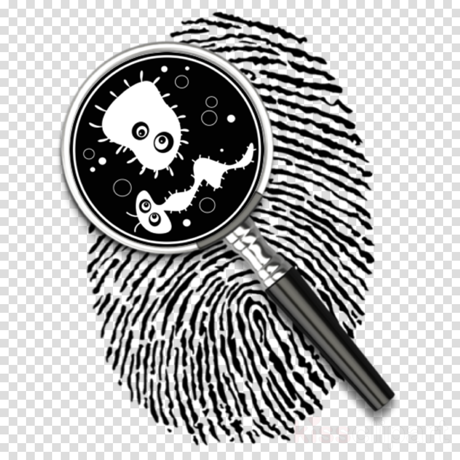 Data Science Icon Clipart Icon Transparent Clip Art