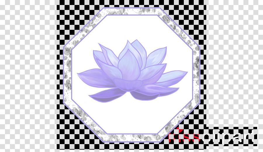 Essential oil Aromatherapy Egyptian lotus Plants Lavender oil
