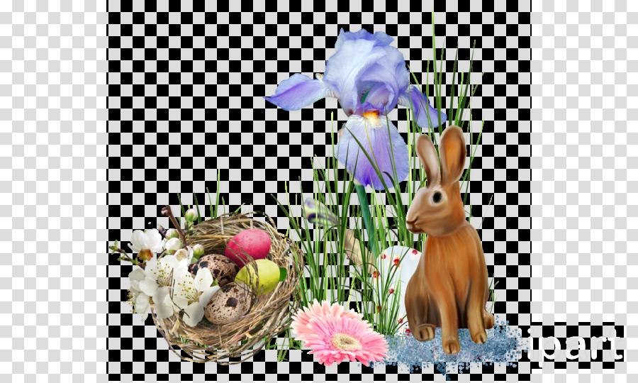 Easter Bunny Domestic rabbit Flower
