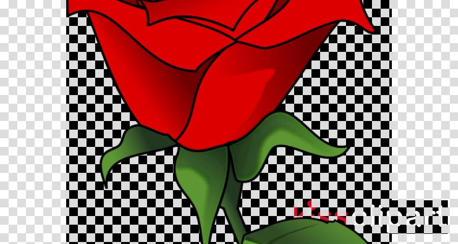 Black Rose Drawing