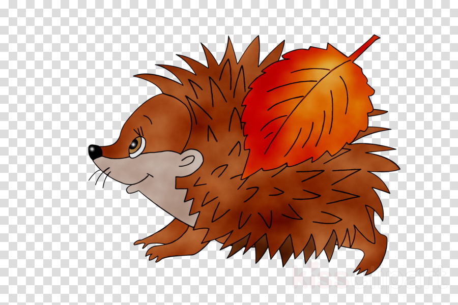 Sonic the Hedgehog European hedgehog Porcupine Domesticated hedgehog