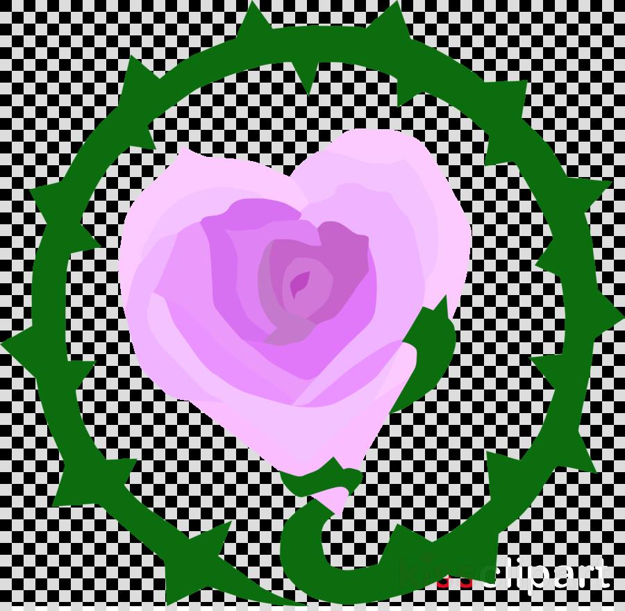 Garden roses Vostokenergoprom Beer Design