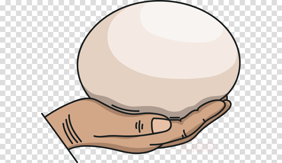 Clip art ostrich egg Hangover Common ostrich World