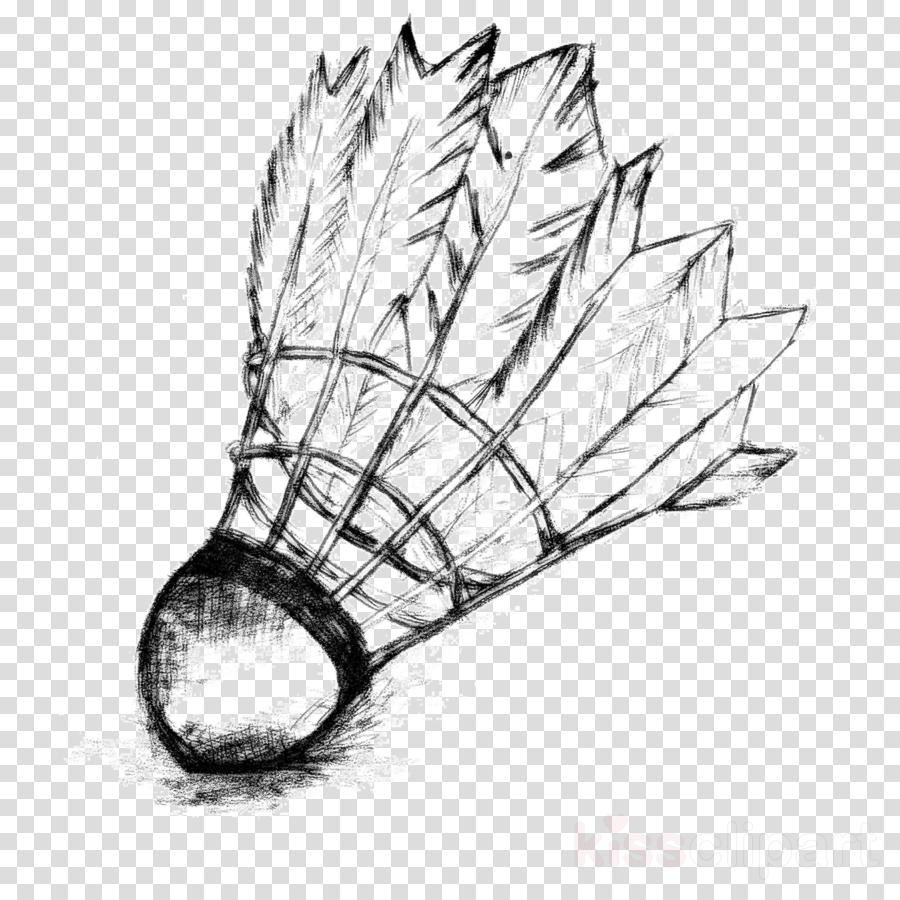 Apple Tree Drawing Clipart Sports Transparent Clip Art