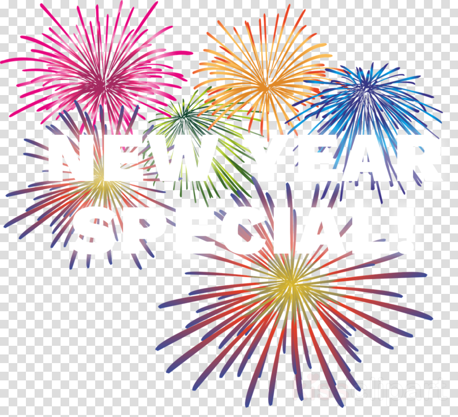 Fireworks Portable Network Graphics Clip art Firecracker Vector graphics
