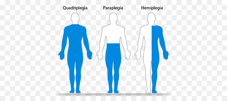 quadriplegia hemiplegia clipart Tetraplegia Spinal cord injury
