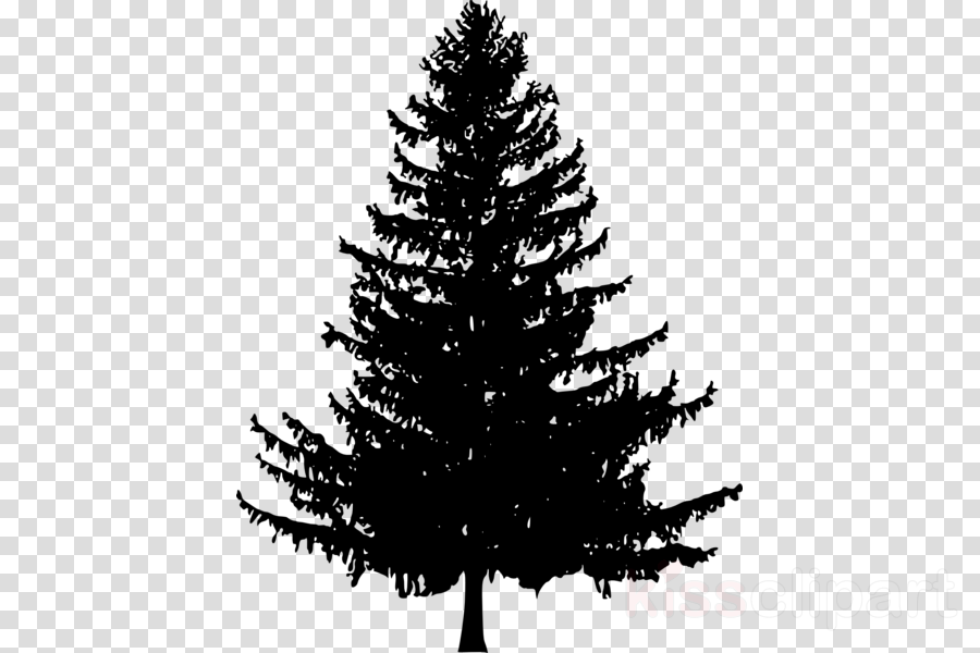 Clip art Pine Silhouette Drawing Portable Network Graphics