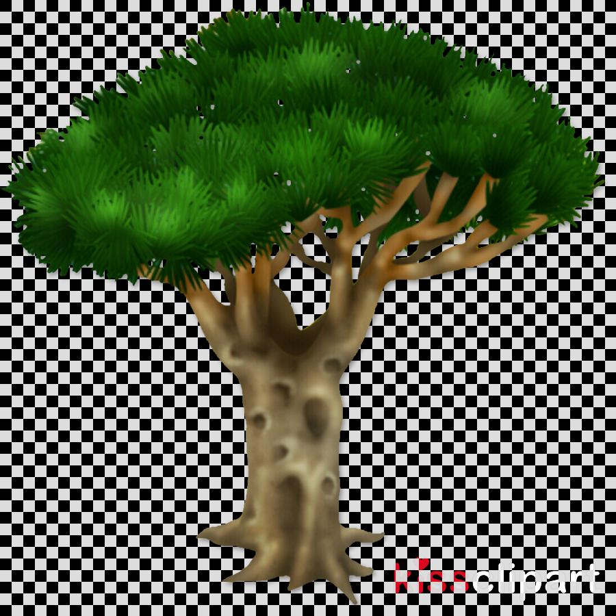 Clip art Pine Branch Acacia Barrel cactus