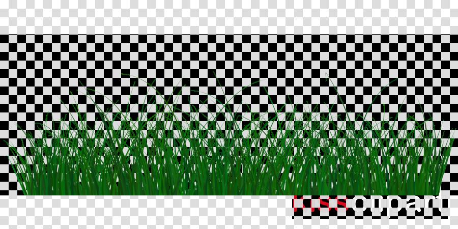 Portable Network Graphics Image Clip art Desktop Wallpaper Transparency