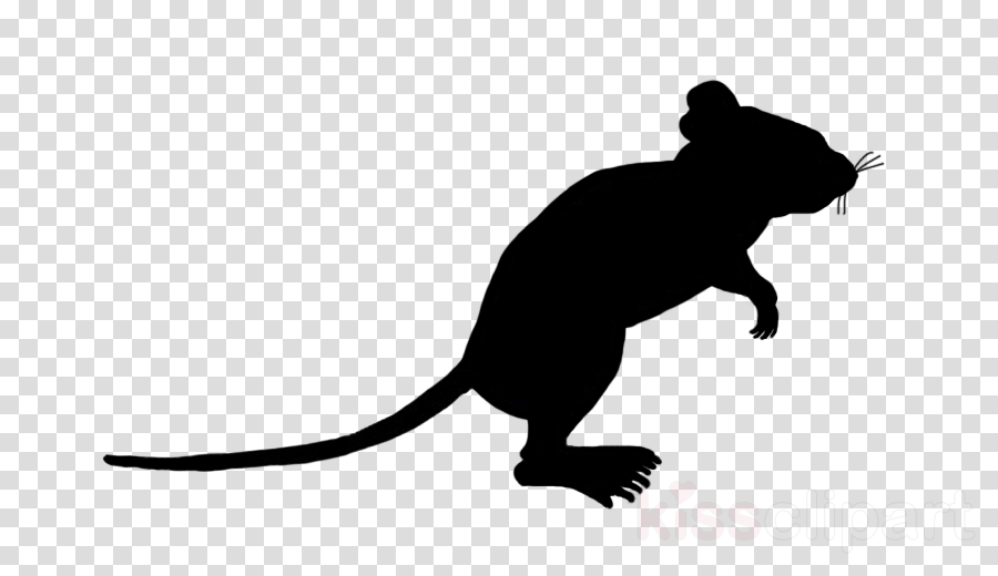 Computer mouse Portable Network Graphics Clip art Silhouette Mickey Mouse