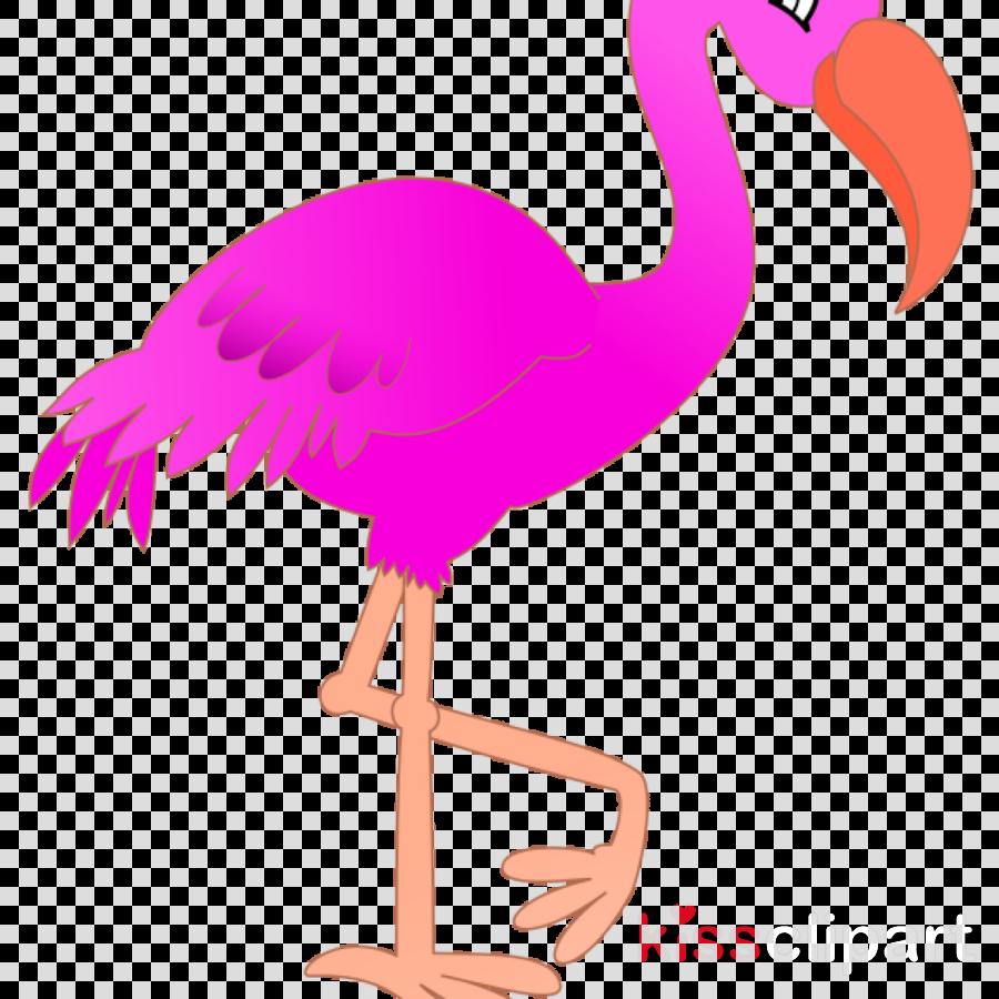 Flamingo Clip art Drawing Vector graphics Cartoon