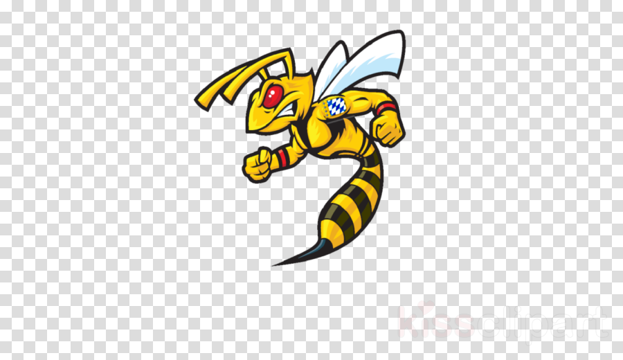 Vector graphics Wasp Bee Illustration European hornet