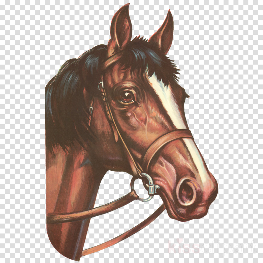 Mustang Horses in art Pony American Paint Horse Andalusian horse