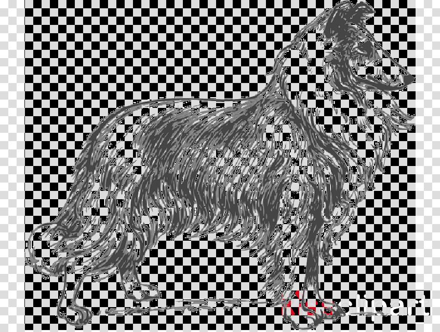 Lassie Rough Collie Coloring book Bull Terrier Border Collie