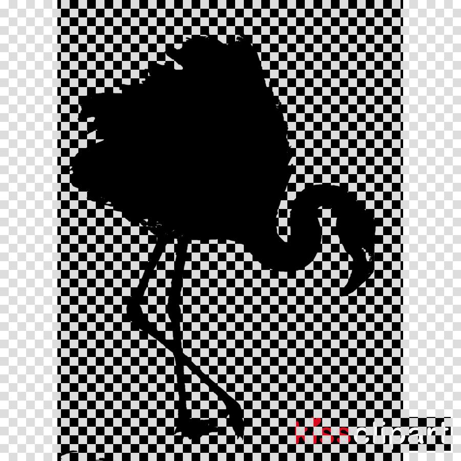 Common ostrich Clip art Bird Beak Black & White - M