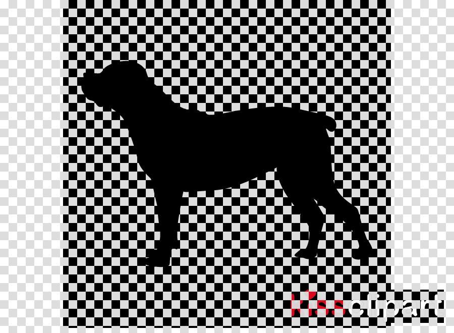 Staffordshire Bull Terrier American Pit Bull Terrier Boston Terrier Boxer