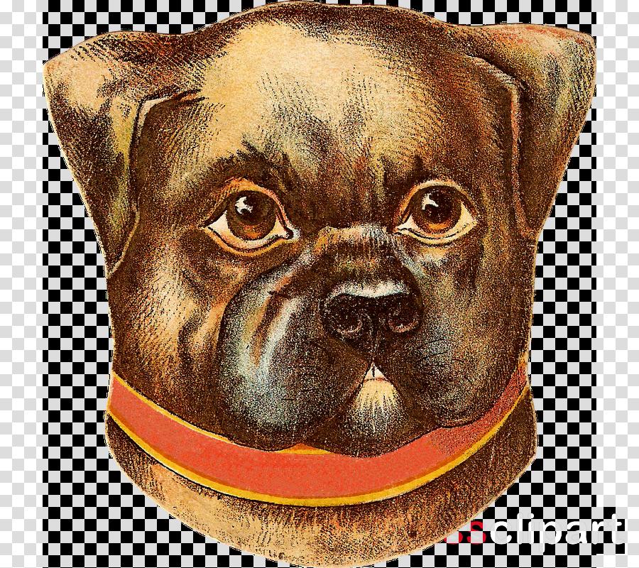 Stock photography Puppy Pembroke Welsh Corgi Illustration Dog breed