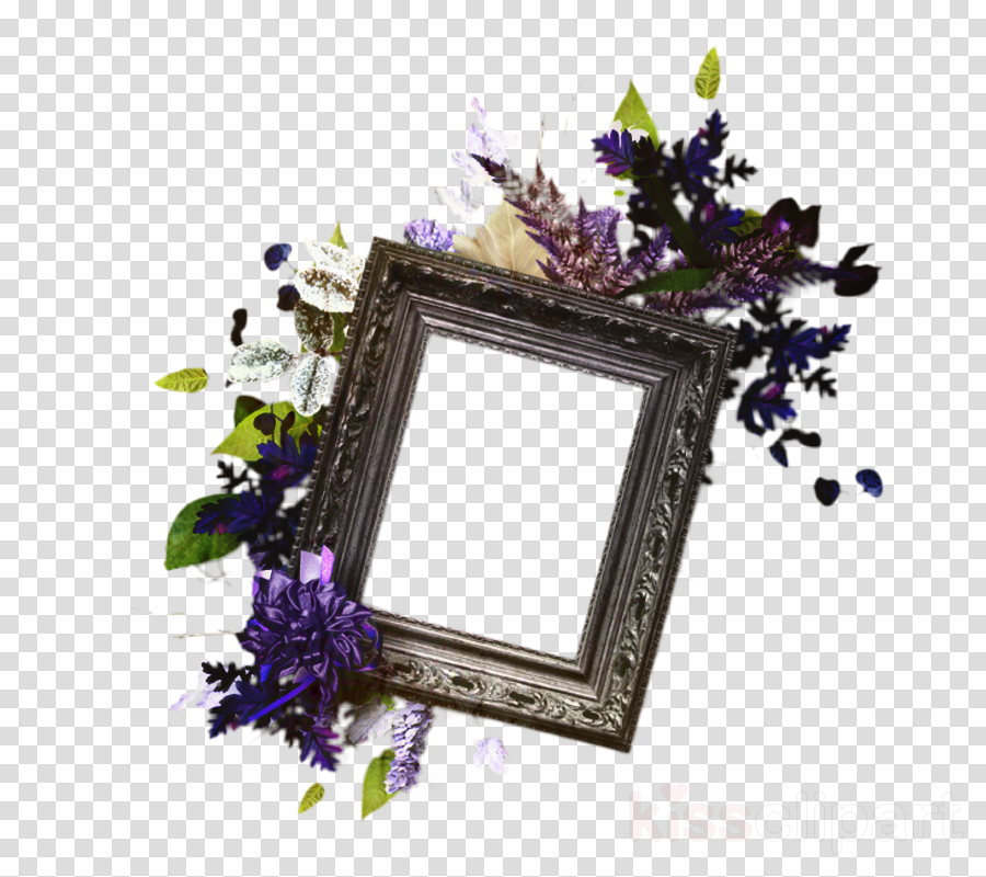 Cut flowers Picture Frames Purple Image