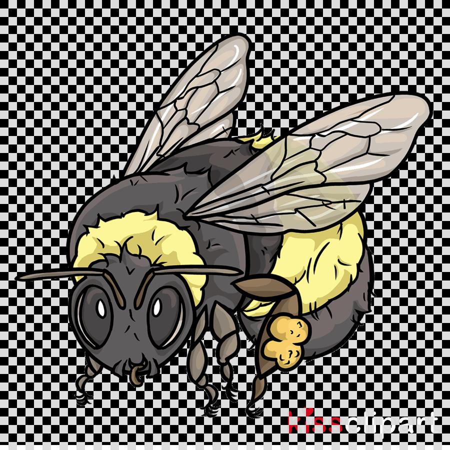 Western honey bee American bumblebee Science