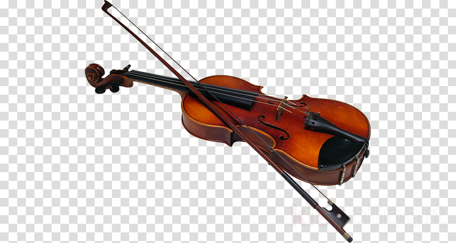 Bow, Violin, Music, transparent png image & clipart free download