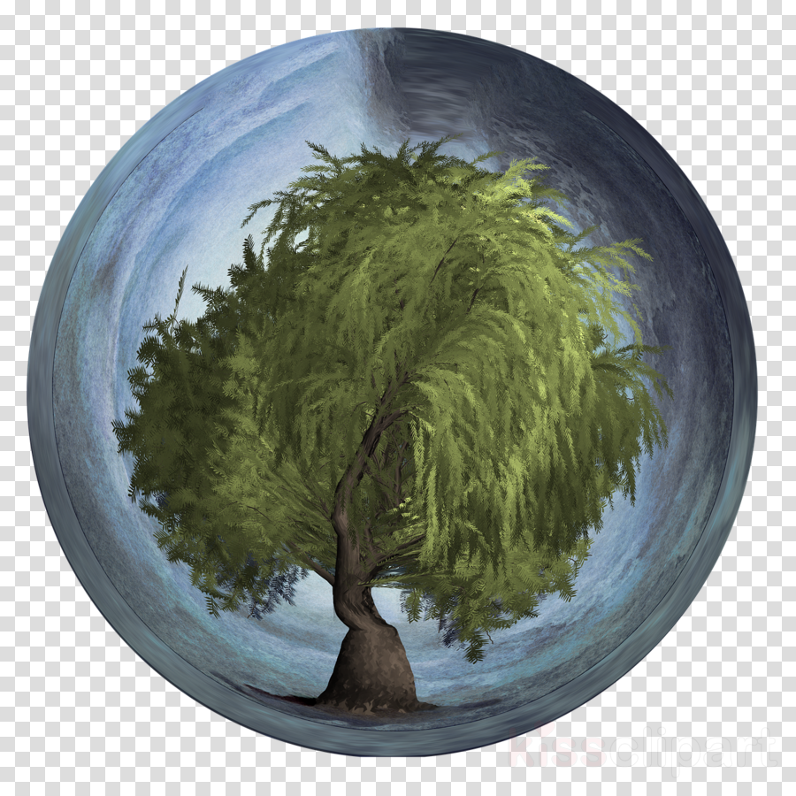 Tree Arbor Day Earth Day Image