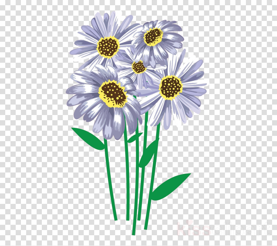 Common daisy Illustration Watercolor painting Image Design