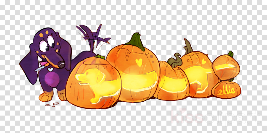 Jack-o'-lantern Gourd Calabaza Winter squash Pumpkin