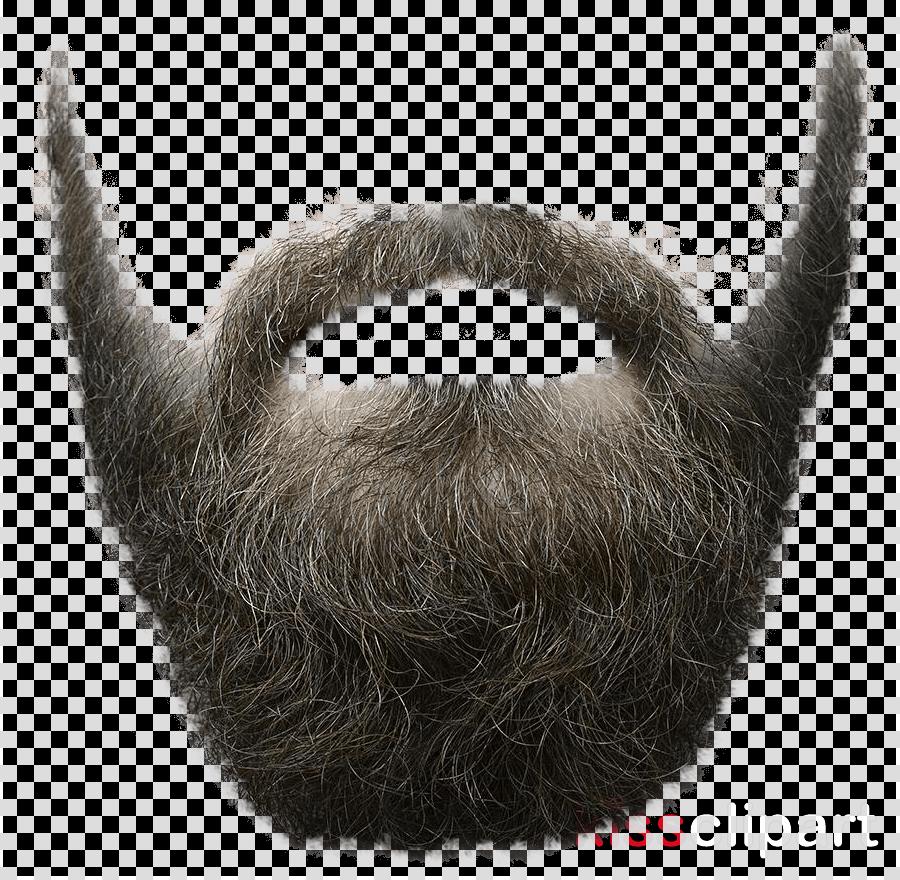 Beard Portable Network Graphics Clip art Moustache Image