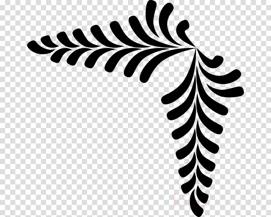 Fern Clip art Portable Network Graphics Vector graphics Plants