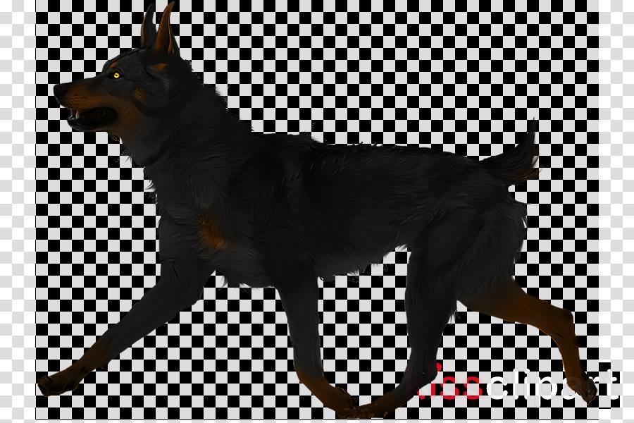Lancashire Heeler Australian Kelpie Manchester Terrier Kunming wolfdog Art