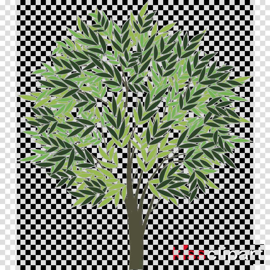 Portable Network Graphics Illustration Vector graphics Image Euclidean vector