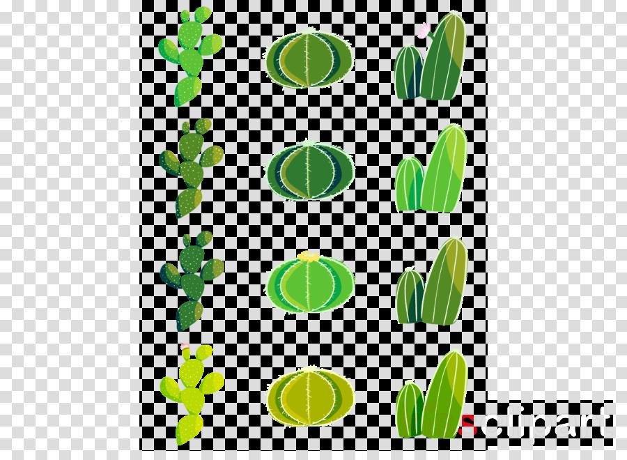 Sticker Transparent Cactus Paper Leaf