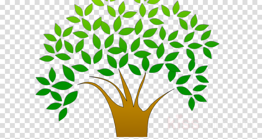 Tree planting Earth Natural environment Plants