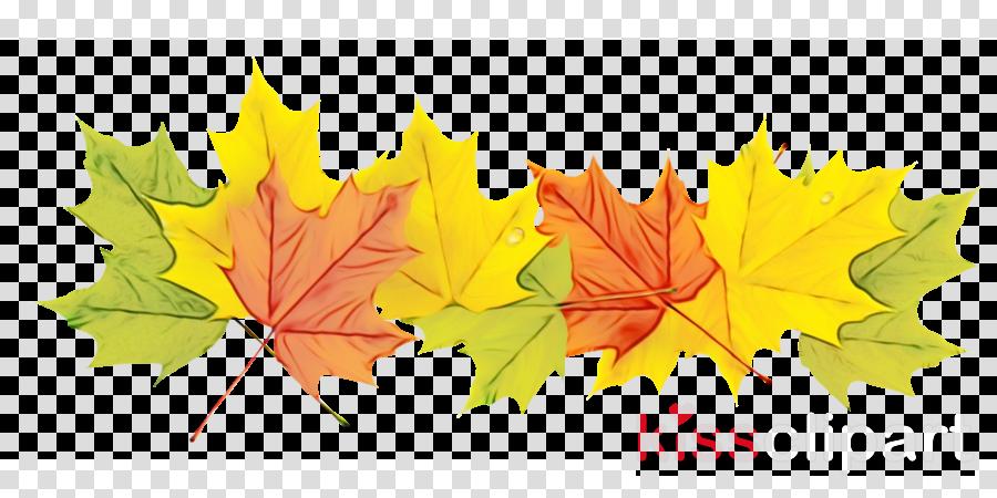 Maple leaf Desktop Wallpaper GIF Orange