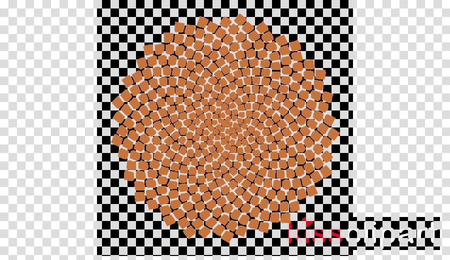 Golden ratio Olivier Collette Phi (feat. Bert Joris & Peter Hertmans) Golden spiral Illustration
