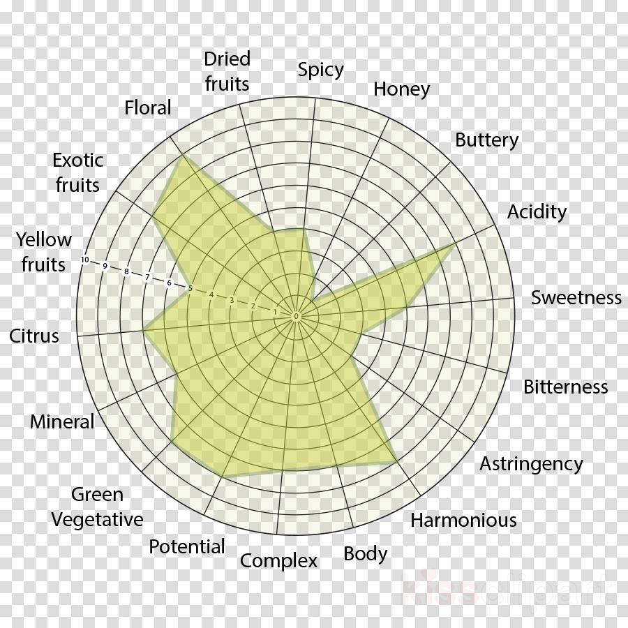 Graph paper Polar coordinate system Graph of a function Vector graphics