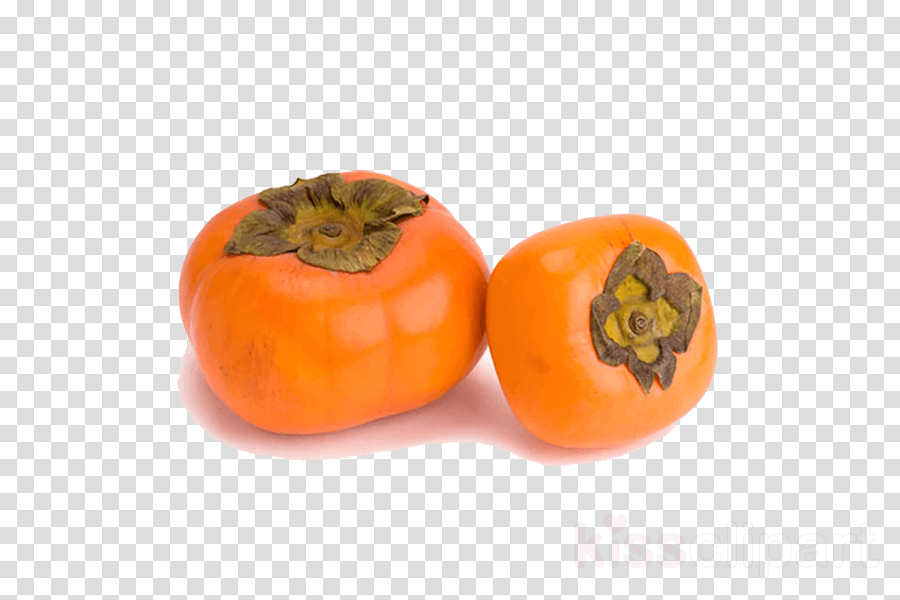 Common Persimmon Berries Stock photography Fruit