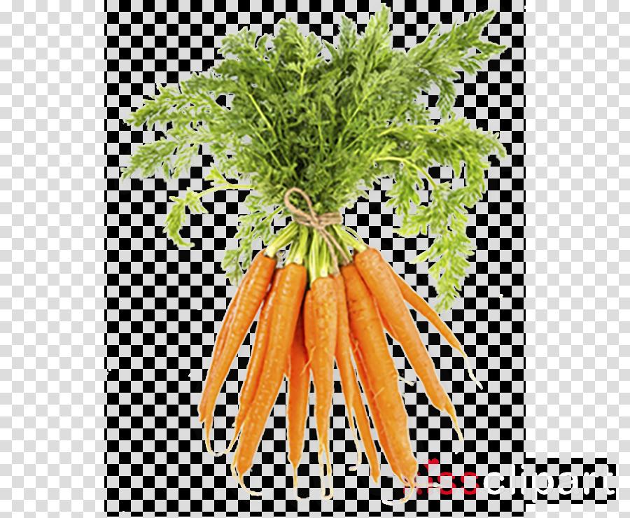 Smoothie Carrot Vegetable Organic food