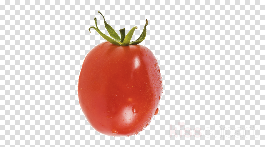 Clip art Portable Network Graphics Image Transparency Cherry tomato