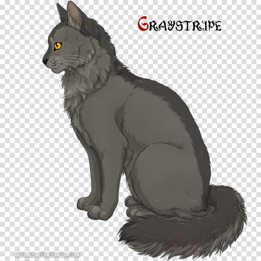 Warriors Graystripe Art Drawing Cat