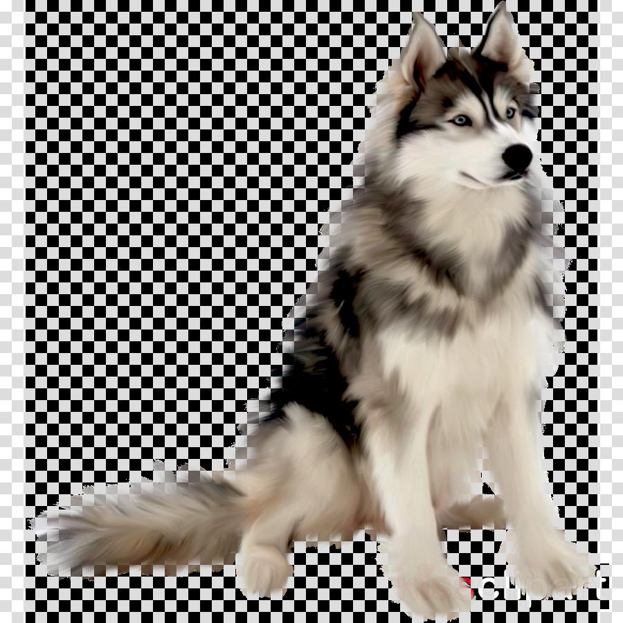 Siberian Husky Puppy Portable Network Graphics Animal Drawing