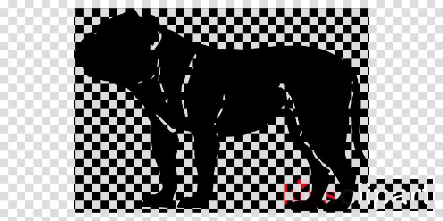 American Bully American Bulldog French Bulldog Olde English Bulldogge