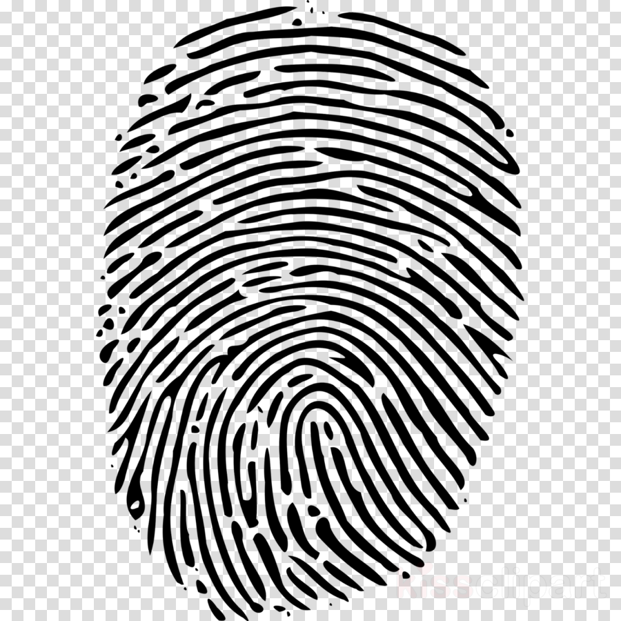 Fingerprint, Computer Icons, Download, transparent png image