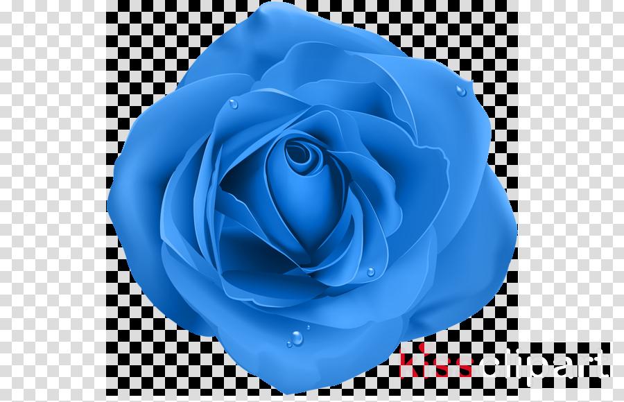 Portable Network Graphics Blue rose Clip art