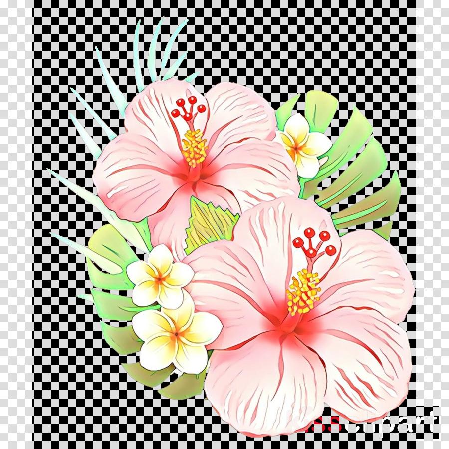 Rosemallows Floral design Cut flowers Alstroemeriaceae Moth orchids