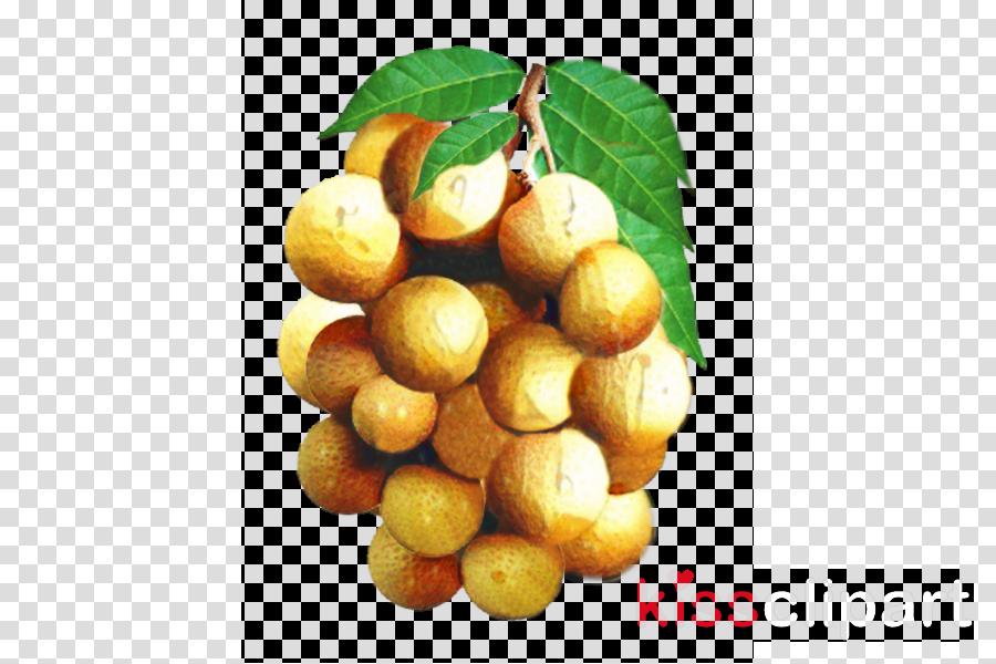 Longan Food Fruit Clip art Thai cuisine