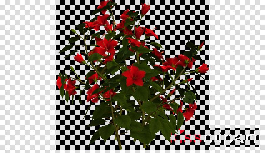 Rose Portable Network Graphics Shrub Flower Clip art