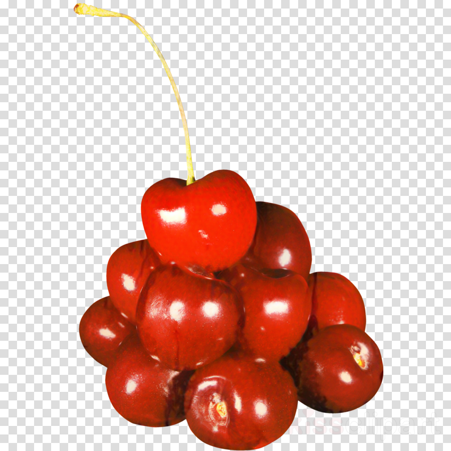 Cherries Clip art Cherry pie Food Fruit