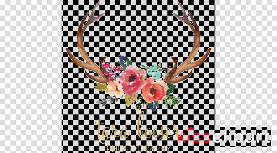 Deer Antler Floral design Clip art Flower