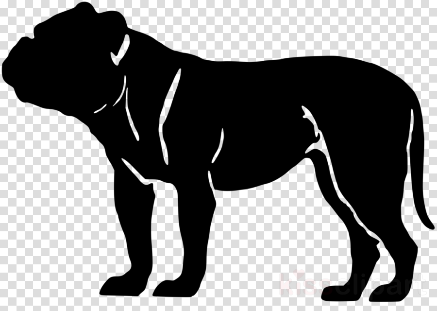 Olde English Bulldogge American Bulldog American Bully French Bulldog